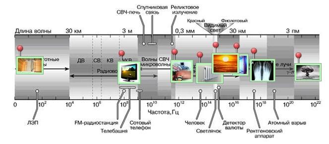 состав микроволновки