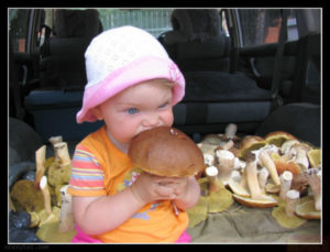 Кому грибы есть не стоит