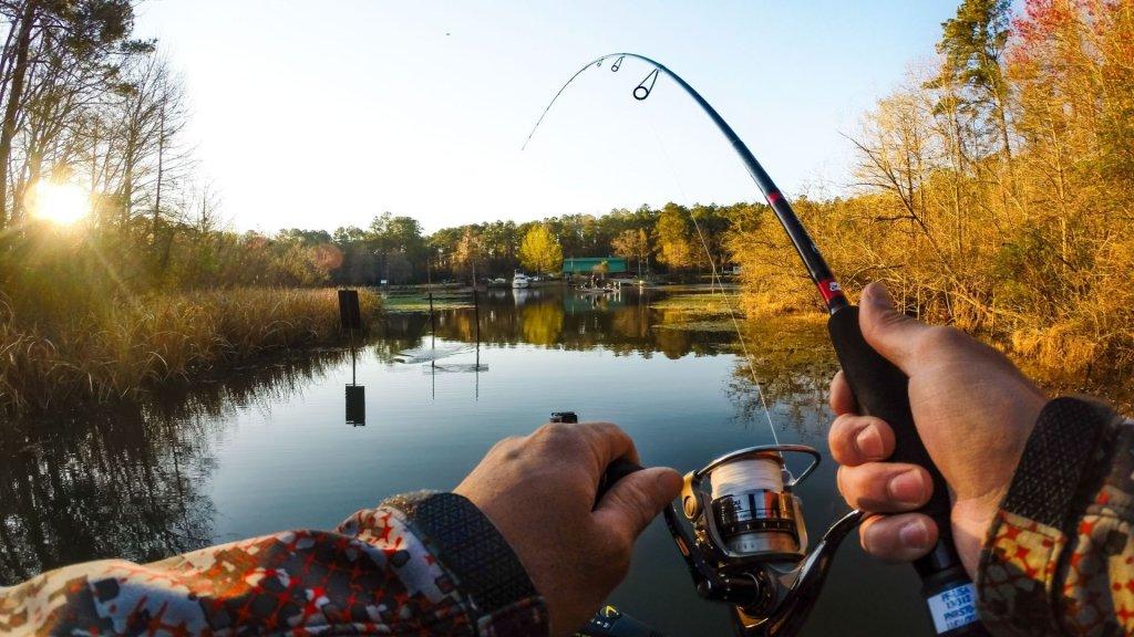 прогулки на свежем воздухе, рыбалка