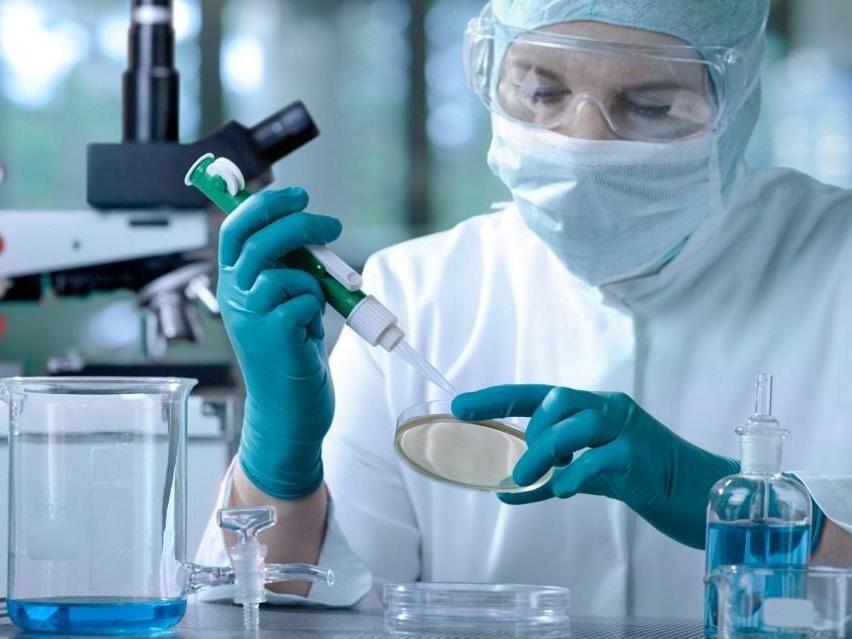 изучение клеток