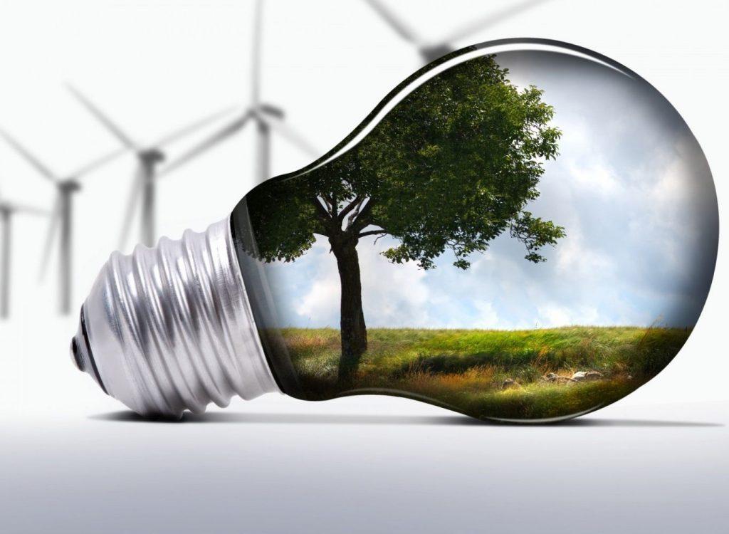 стартап на тему экология