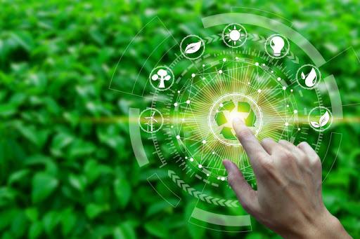 эко-стартапы