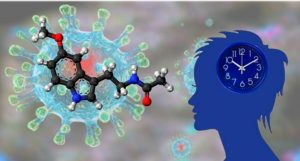 Мелатонин против коронавируса