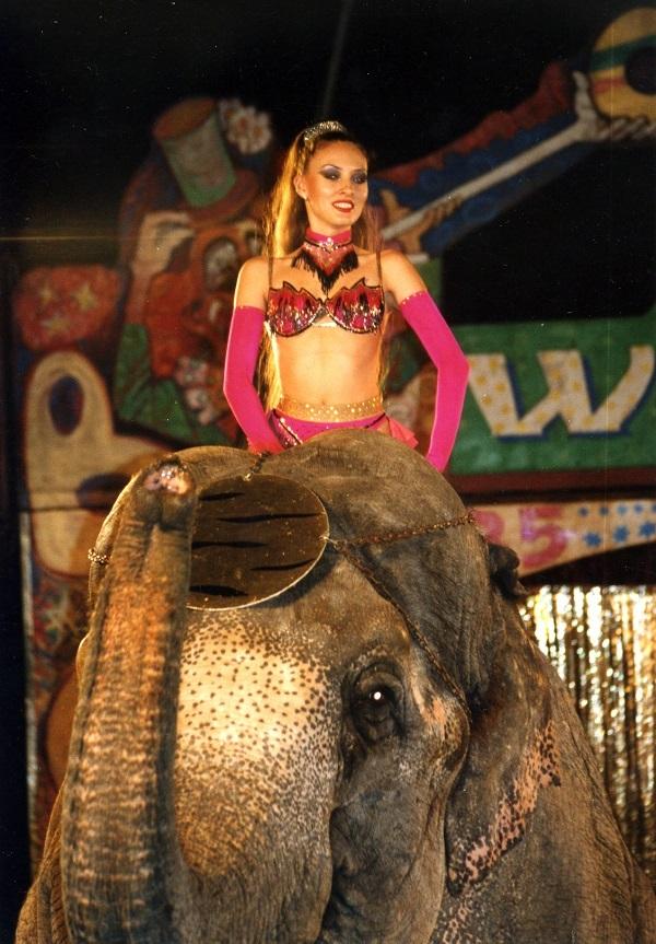 Дресировщица на слоне