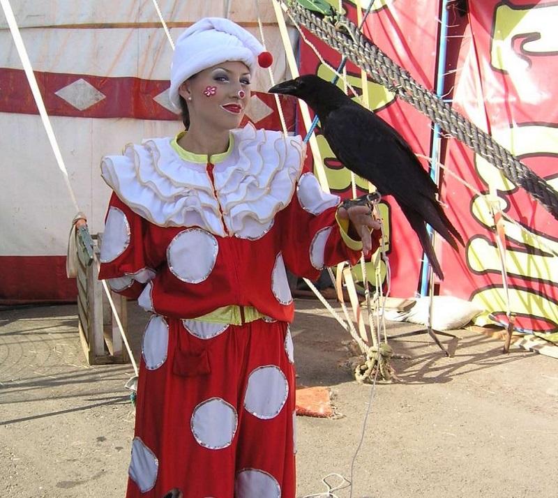 Клоун с цирковым вороном