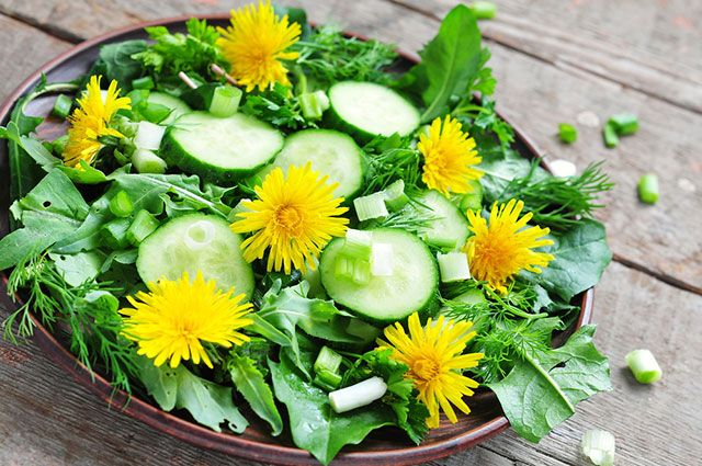 Салат из одуванчика - рецепт