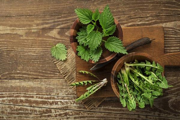 Весенний салат из диких трав - рецепт