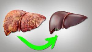 печень и гепатит